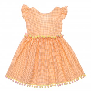 Shandy Orange Dress