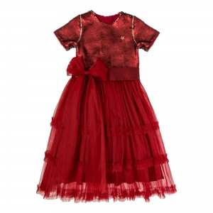 Grace Burgundy Long Tulle Dress